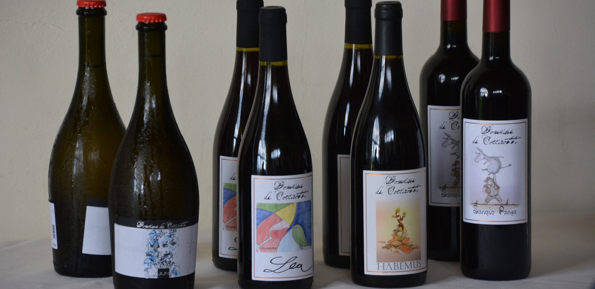 Taste 4 different wines at each winery