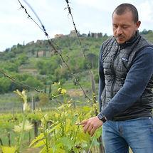Brunello di Montalcino at Le Chiuse on a wine tour with Grape Tours