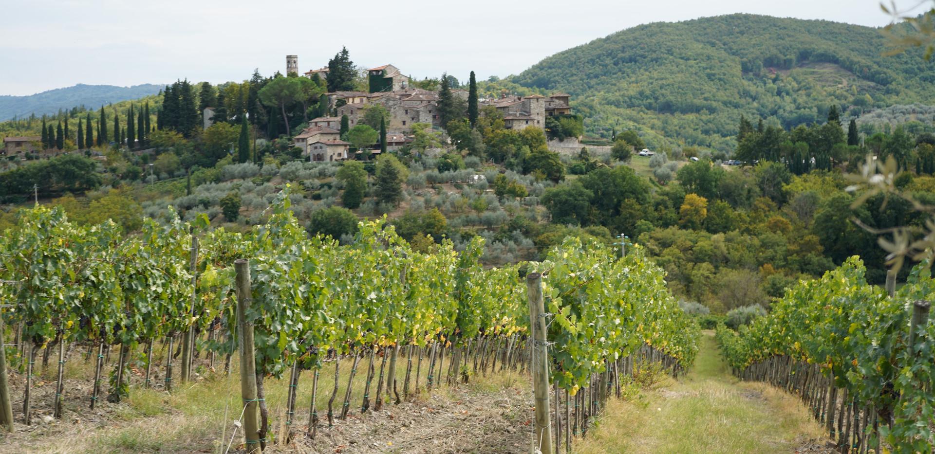 Full-day in Chianti Classico - Montefioralle