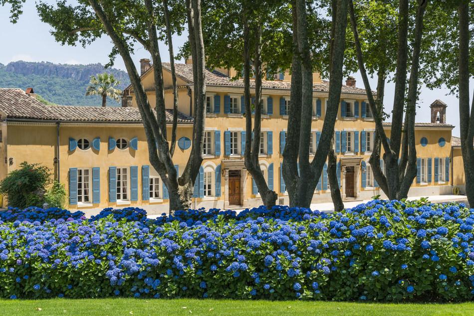 Chateau d'Esclans.jpeg