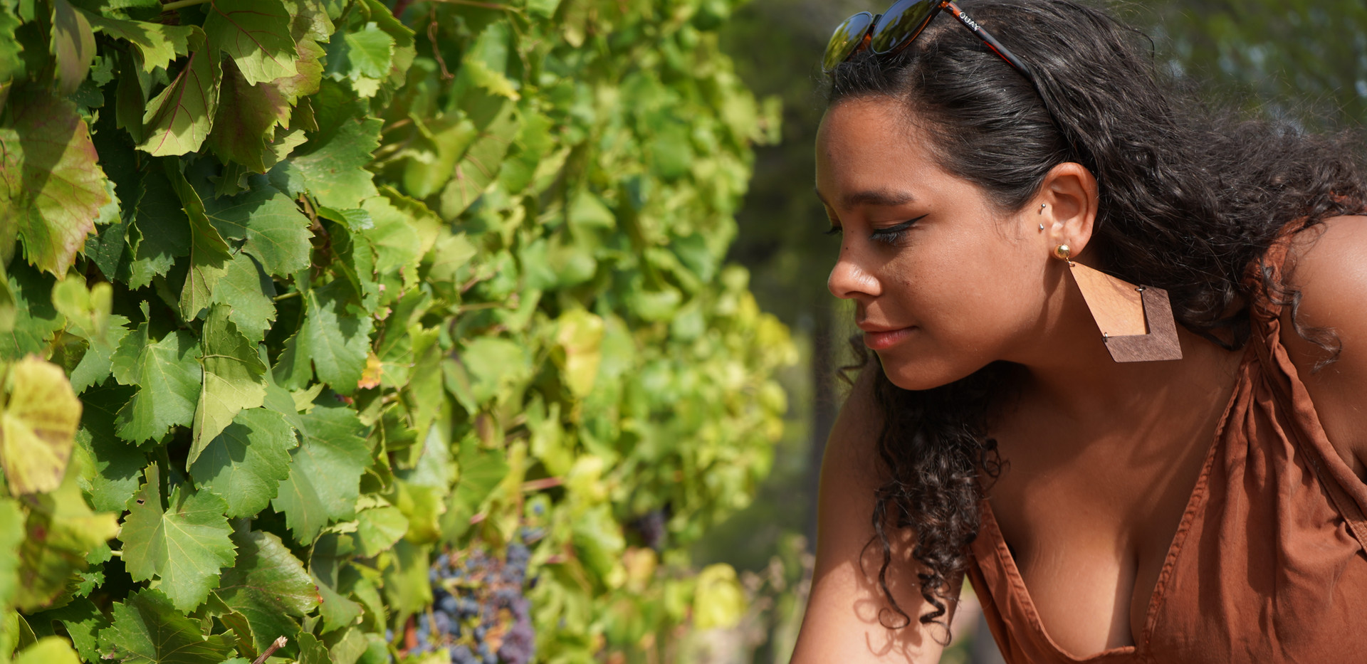 Tasting the grapes