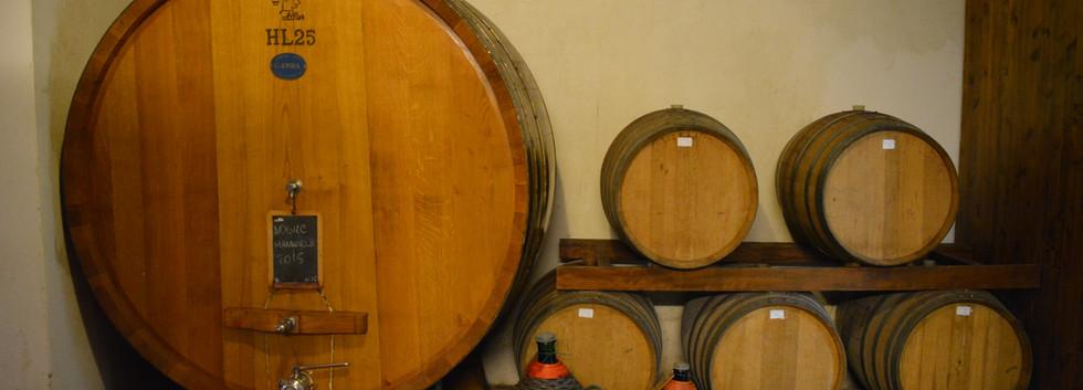 Cellars in Montepulciano