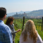 Carmignano wine tour with Grape Tours from Florence