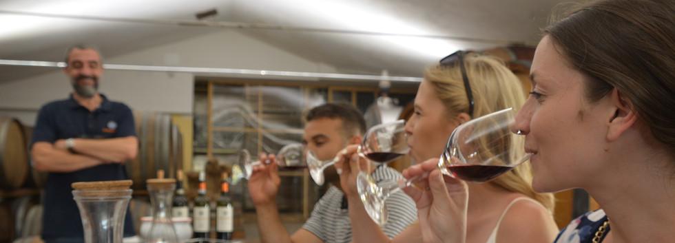 Great wine tastings in great wineries