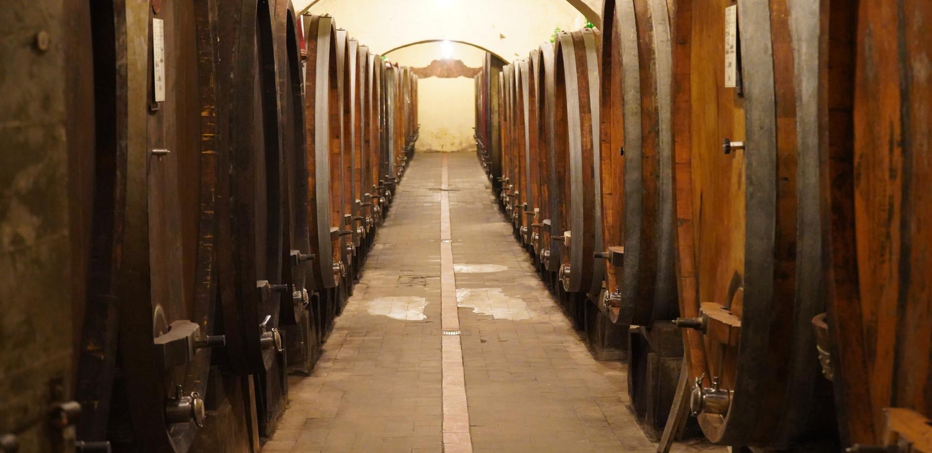 Visit historical cellars