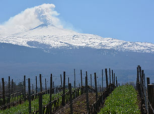 Etna 8.JPG