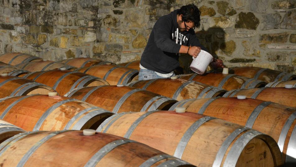 Barrels at Castello dei Rampolla