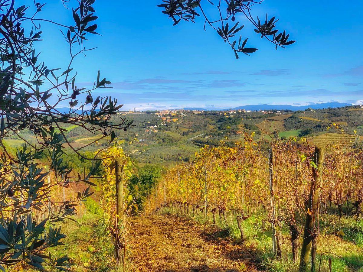 Toscane automne.jpg