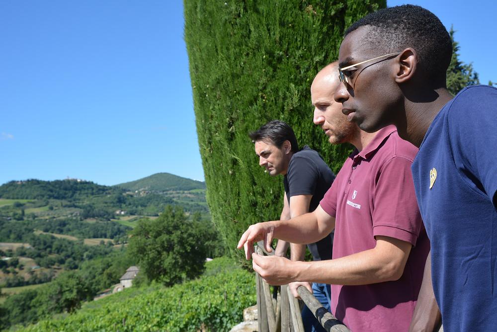 Montevertine, Radda in Chianti