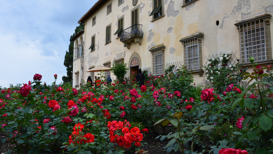 Visit Villa Capezzana rose garden