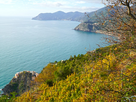 Le Cinque Terre's heroic winemakers