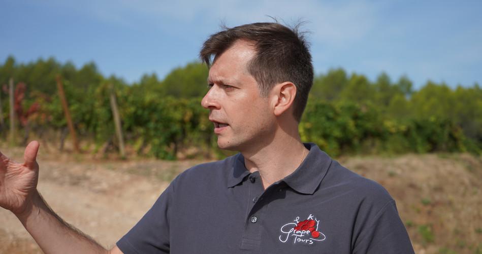 Grape Tours guide