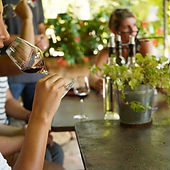 Taste whites, roses & reds on a Provence wine tour with Grape Tours