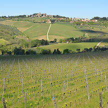 Panzano in Chiani on a Tuscan Wine Tour with Grape Tours