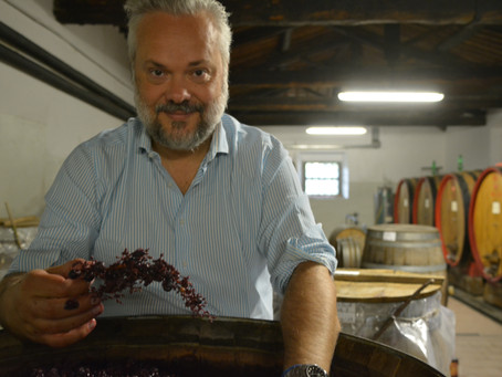 Historical families in Tuscan winemaking