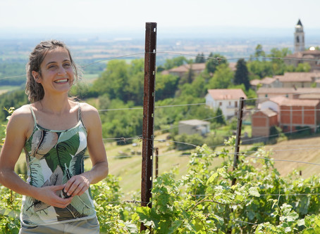 Timorasso - Derthona in Colli Tortonesi in Piedmont
