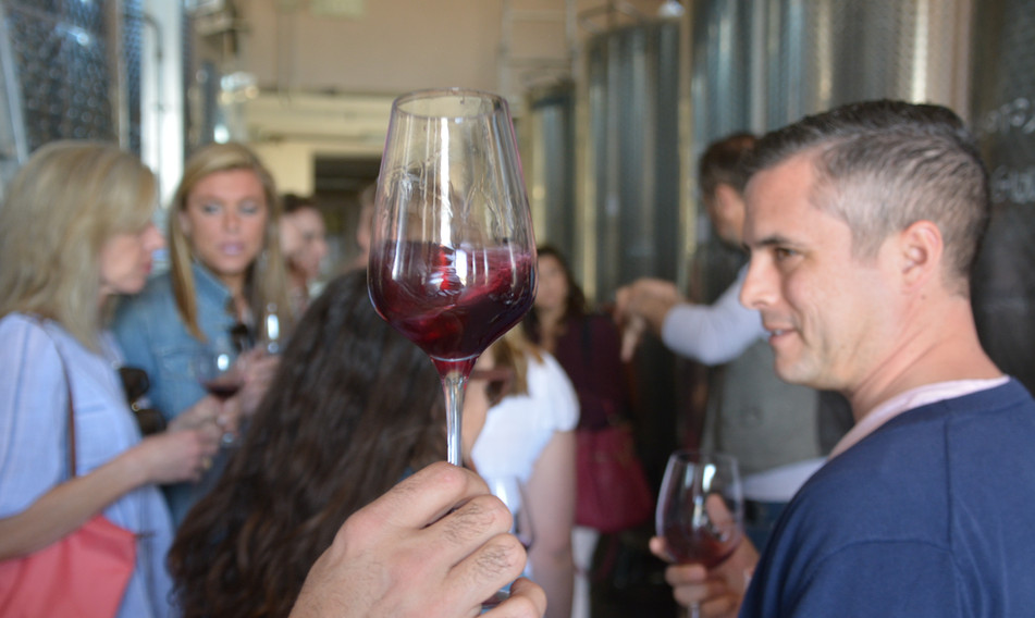 At least 9 different wines sampled during the day (plus vat tasting)