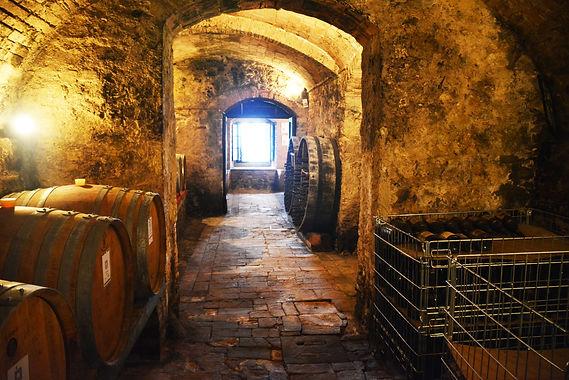 Visite de caves en Toscane