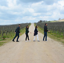 half day wine & oil tour insta1 copy.jpg