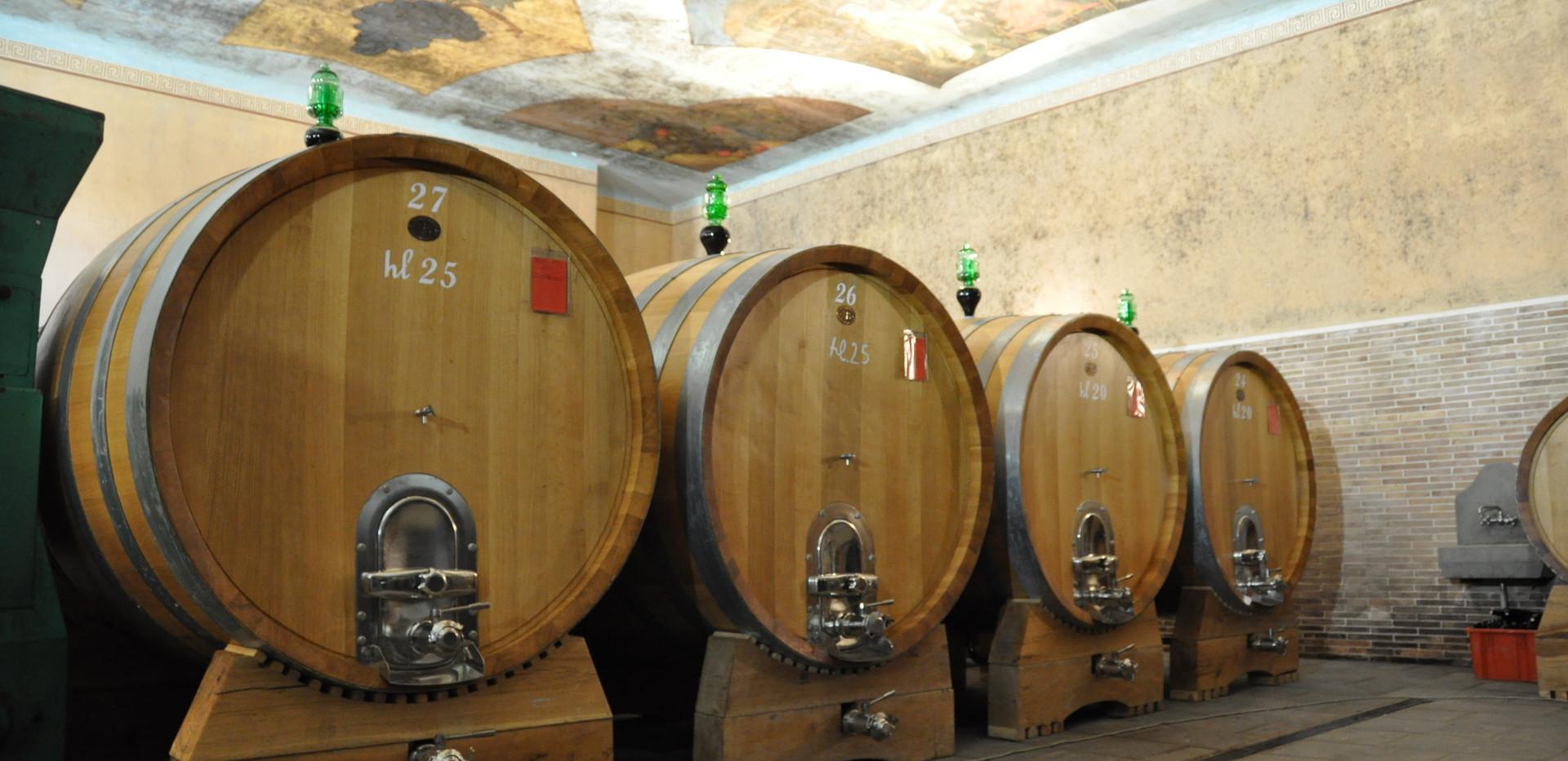 Full-day wine tasting Brunello di Montalcino