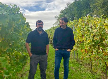 Grape revolution in Bordeaux?