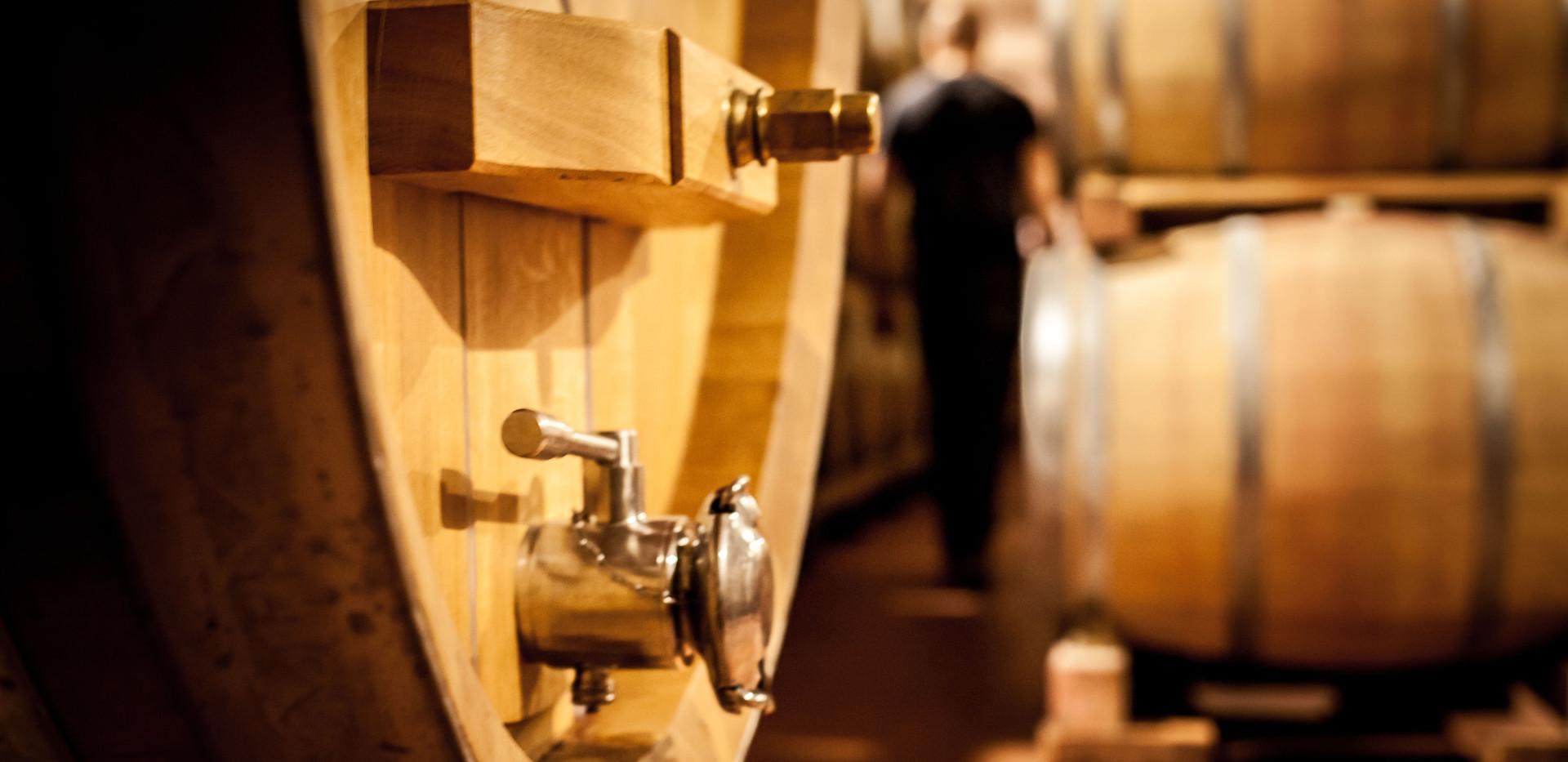 Visit a Tuscan wine cellar