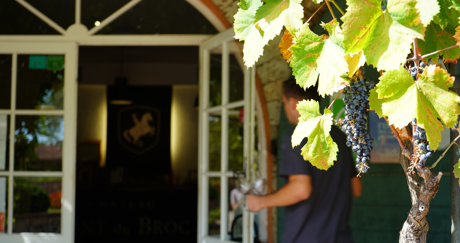 We visit 3 different wineries in Provence