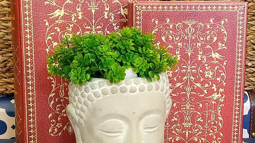 Buda cachepô