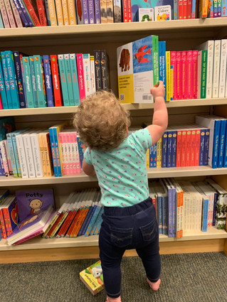 Summer Book Checkout at the Library!!