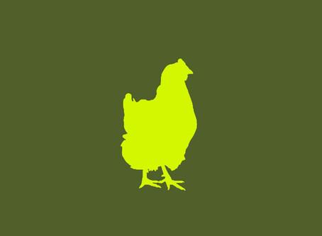 Wieder frisches Bio-Hühnerfleisch erhätlich