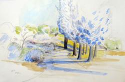 Cedars, San Garbriel