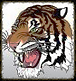 lacrosse_edited.jpg 2013-10-13-14:24:51