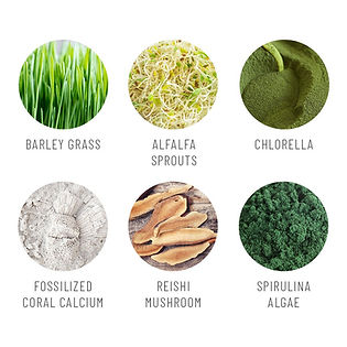 Super Greens 4.jpg
