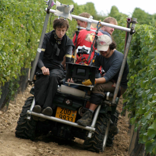 vineyards and quads