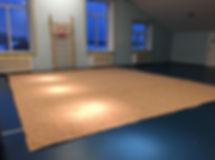 Клуб художественной гимнастики GymStar Саларьево