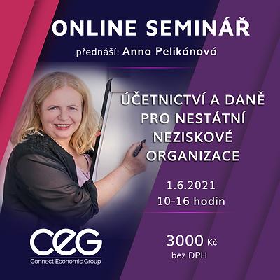 Online_seminar_ucetnictvi_dane_neziskove