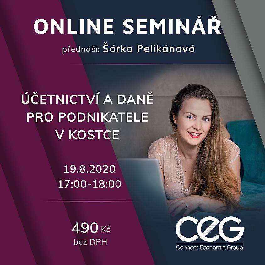 Online seminář: Základy účetnictví a daně pro podnikatele v kostce