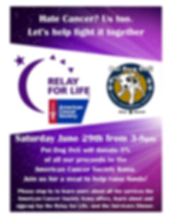 Relay for Life fundraising poster.jpg