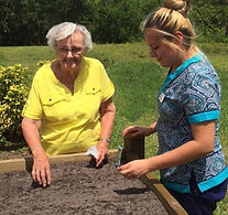 Resident and care giver planting in the raised garden bed