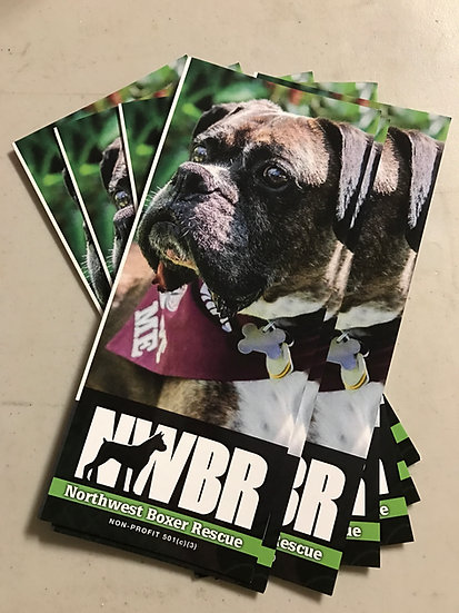 Tri-Fold Brochures (Qty 25)