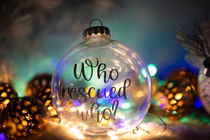 Christmas Ornament - Who Rescued Who?