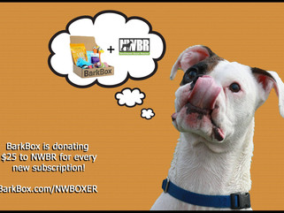 News Flash - BarkBox Gives $25 to NWBR for All New Orders!