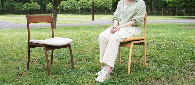ANP chair