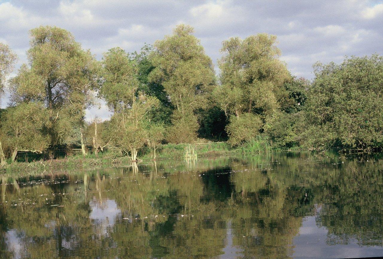 1 ASHTON WATER 1989