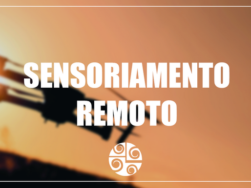 Entrevista com a engenheira cartógrafa Mariane – Sensoriamento remoto