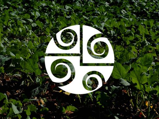 O que é Adubação Verde?