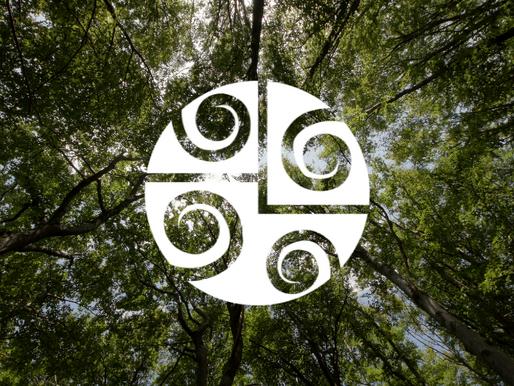 Relações Ecológicas Benéficas para as Florestas
