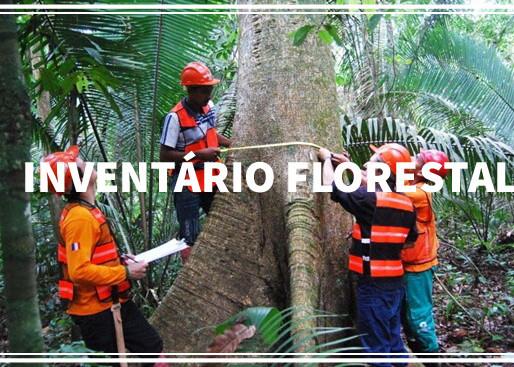 Entrevista com Professor Hugo Barbosa - Inventário Florestal.