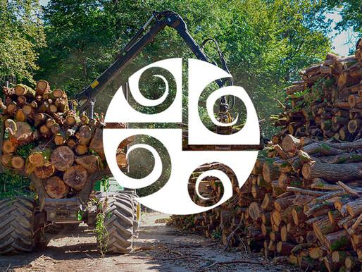 A Tecnologia no Setor Florestal