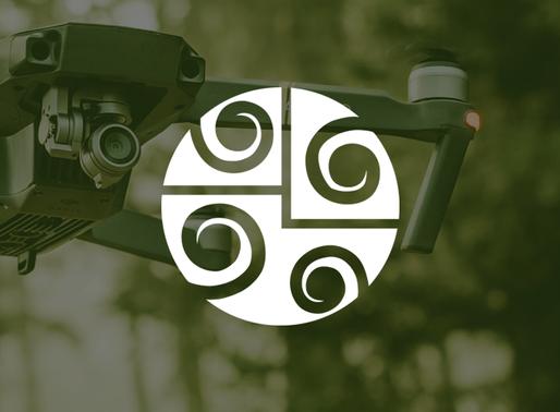 Como Funcionam os inventários florestais feitos com Drone?
